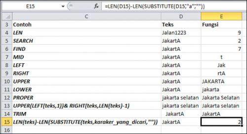 Fungsi-Rumus-Excel_Text8