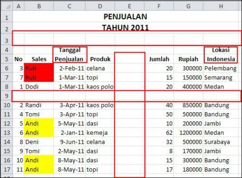 Cara-Filter-Data-di-Excel-0