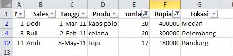 Cara-Filter-Data-di-Excel-9