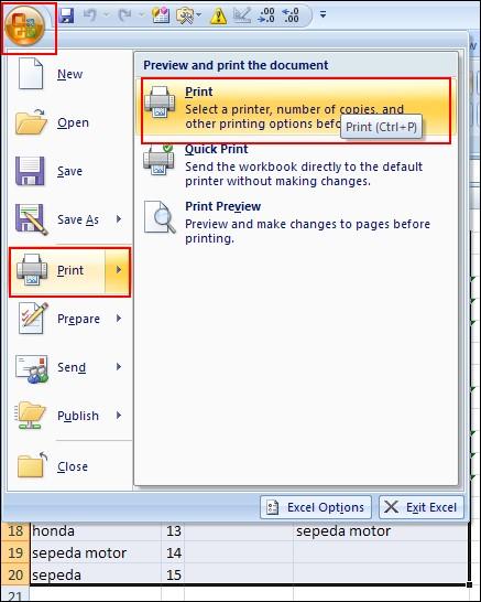 Print-Excel-3