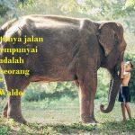 kata kata persahabatan menyentuh hati