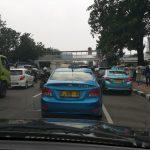Perjalanan Pameran Flora Fauna Jakarta