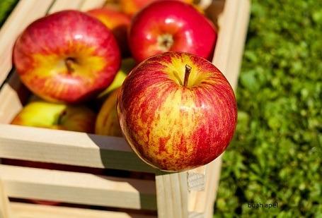 Manfaat sayur dan buah untuk ibu hamil